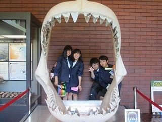 自然の博物館