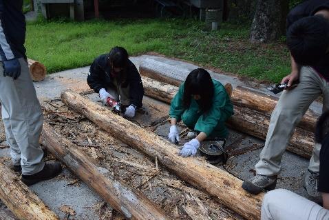 間伐材の利用